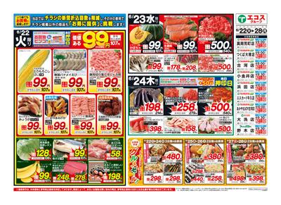 6月22日号生鮮版日替わり・99円均一・肉のジャンボ市・通し:おもて